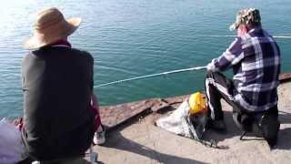 видео Ловля барабули в черном море с берега