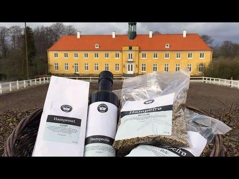 Landmads Producenter: Møllerup Gods (hamp)
