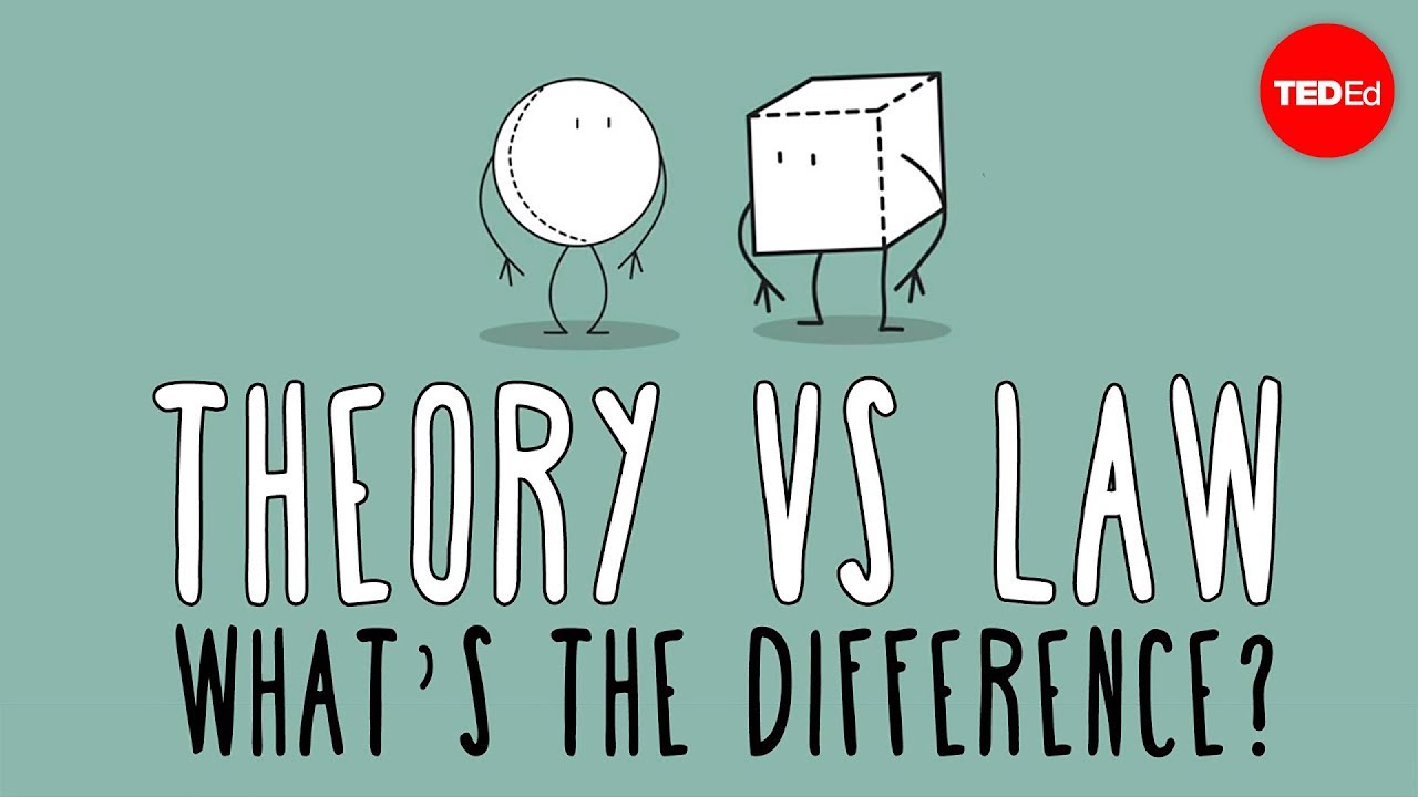 medium resolution of What's the difference between a scientific law and theory? - Matt Anticole  - YouTube