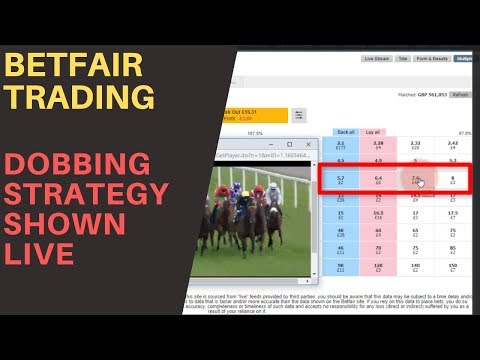 betfair trading and sports betting forum