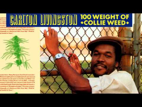 Calton Livingston. 100 weight of collie weed 12