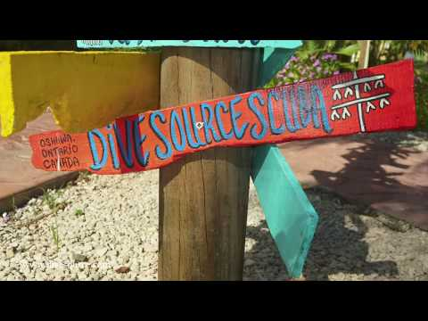 Diving with Dive Source | Coral Restoration - Bonaire
