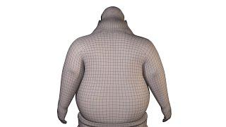 Elastic Implicit Skinning (SIGGRAPH ASIA 2014)