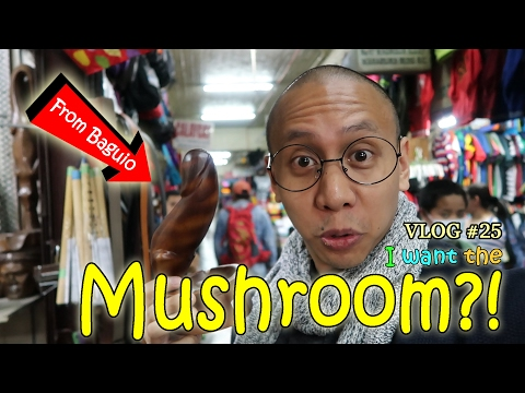 MUSHROOM?! | February 12, 2017 | Vlog #25