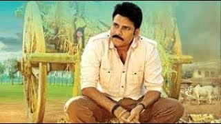 Katamarayudu (2017) Full Hindi Dubbed Movie | Pawan Kalyan, Shruti Haasan, Ali, Nassar