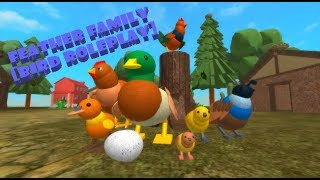 ROBLOX ~ Feather Family 🕊️ Bird Roleplay