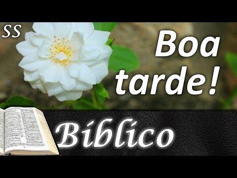 Mensagem Bíblica De Boa Tarde Com Lindas Flores Tenha Paz E Confie Whatsappfacebook