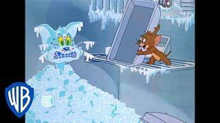 Tom y Jerry en Latino | ¿Está Jerry Cuidando a Tom?