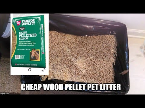 Cheap Cat Kitten Litter Using Pine Pellets Equine Bedding Wood Stove Environmental Friendly Compost.