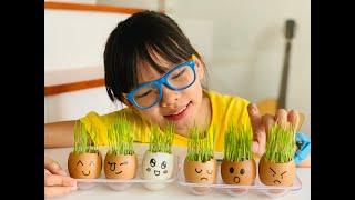 PLAY   Những quả trứng ngộ nghĩnh
