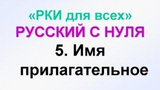5-урок. Какой? Прилагательные.  Грамматика русского языка с нуля.