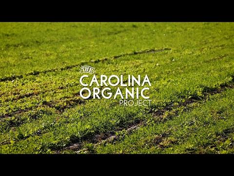 Carolina Organic Project: Organic Integrity