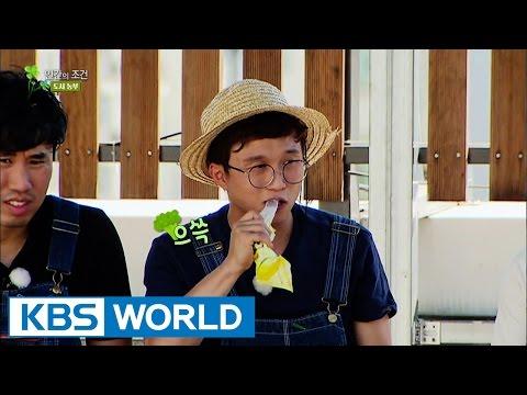 The Human Condition Season 3   인간의 조건 시즌 3: Grow Grapefruit on the Rooftop? (2015.10.21)