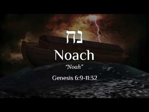 Noach - Learn Biblical Hebrew