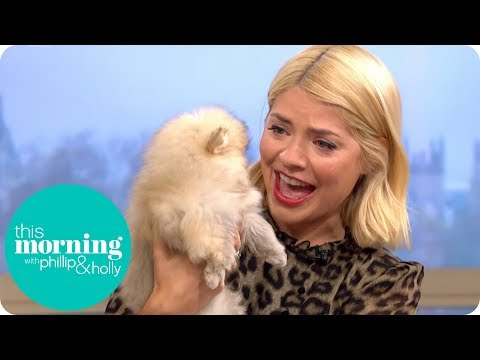 Holly Cries Over Puppies During Her Birthday Surprise | This Morning