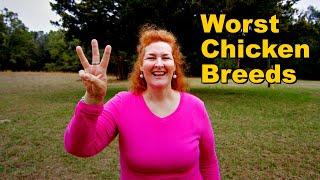 The 3 WORST Chicken Breeds