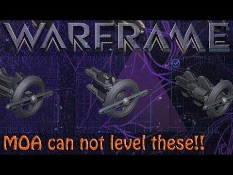 Warframe - Leveling Those 3 Companion Weapons thumbnail