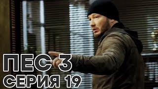 Сериал ПЕС - 3 сезон - 19 серия - ВСЕ СЕРИИ смотреть онлайн | СЕРИАЛЫ ICTV