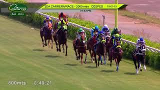 Vidéo de la course PMU HANDICAP 2000