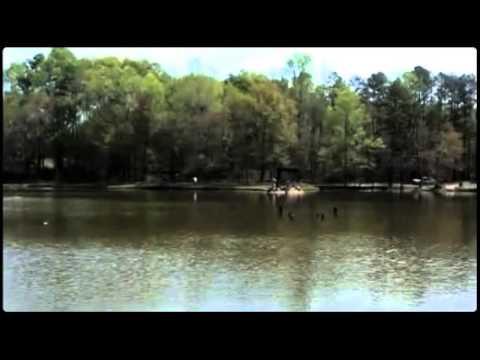 STONEYBROOK FISHING LAKE