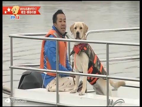 ทริปของคนรักสุนัข ตอน มาซาฮารุตะลอนทัวร์ญี่ปุ่น #04