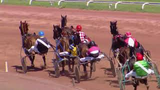 Vidéo de la course PMU PRIX DE L'AMITIE DIVONNE-AVENCHES