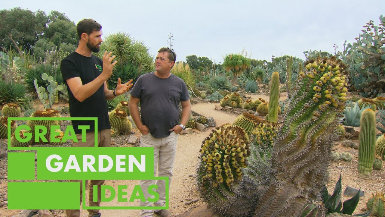 Jason Visits the LARGEST Cactus Collection in Australia | GARDEN | Great Home Ideas
