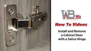 Salice Cabinet Concealed Hinge