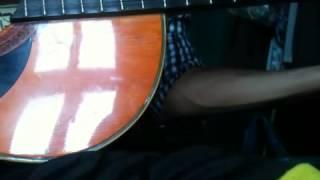 Mưa Rừng - Guitar