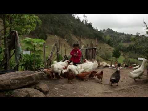 Cultura culinaria de Ventaquemada Boyacá