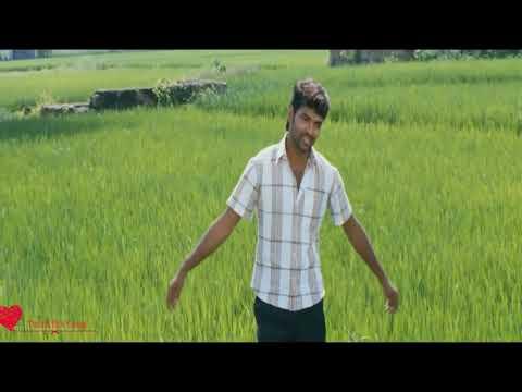 Nee Otha Sollu Sollu - Aval Peyar Tamilarasi __whatsapp Status