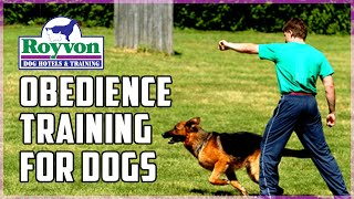 Royvon's Obedience Training For Dogs