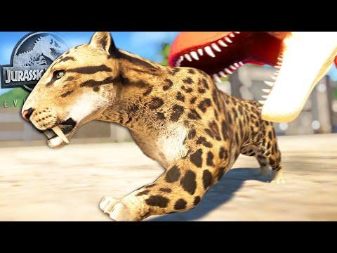SMILODON IN JURASSIC WORLD EVOLUTION!! | Saber-Toothed Tiger Vs T-rex || Jurassic World Evolution |