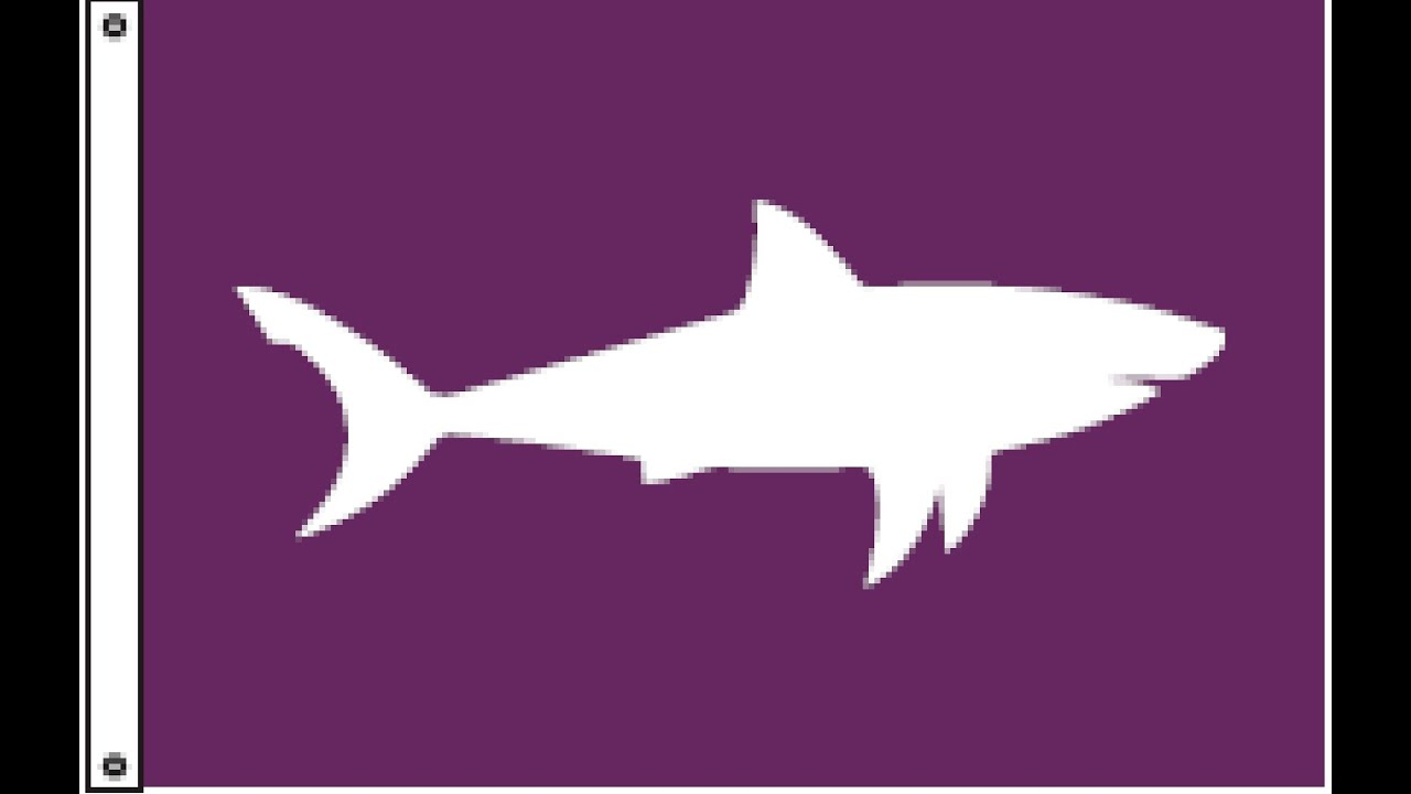 What you need to know about sharks off Cape Cod | Boston com