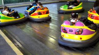 Six Flags Bumper cars