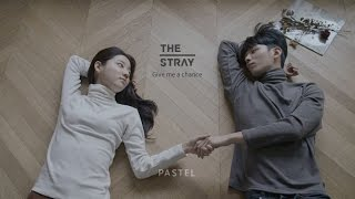 [MV] 스트레이(The Stray) - Give me a chance