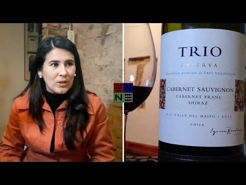 Vino nvidencia: Trio •Concha y Toro