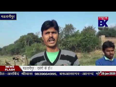 खनन माफिया मस्त, मऊरानीपुर प्रशासन सुस्त।