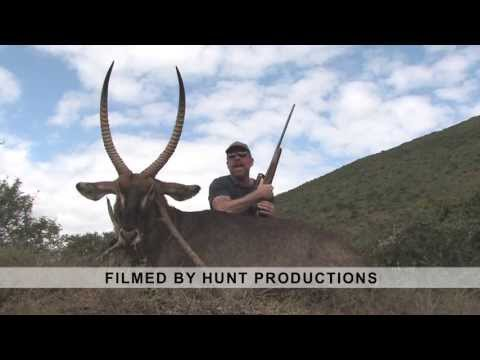 Excellent Waterbuck Trophy filmed by HUNT Productions