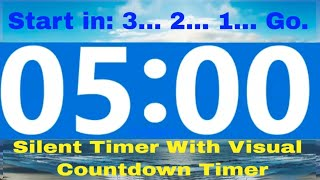 5 minute Countdown Timer. No Music. With 3 Second Count Down To Start. NEW For 2020