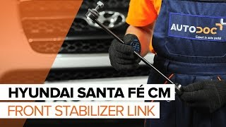 How to change Injector nozzle CHRYSLER 300 M (LR) - step-by-step video manual