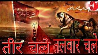 Teer chale talwar chale | Dj remix तीर चले तलवार चले moharram special qawwali