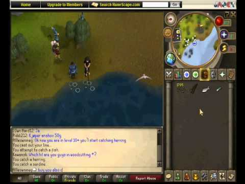 Runescape Fishing (Level 1-30 Fastast Way)