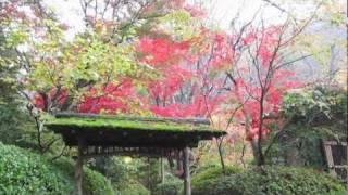 秋雨の中、東京都八王子市の武蔵陵墓地を訪ねました。ここには昭和天皇...