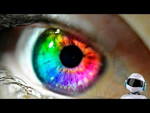 Все факты о глазах и о цвете глаз Фото Мир Фактов