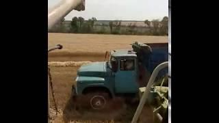 Выгрузка зернового бункера.Клаас тукано 470 , Зил 130