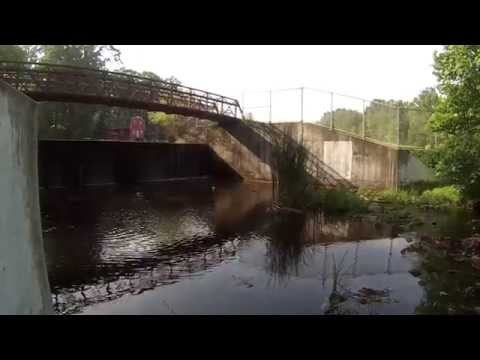 Fishing For Chain Pickerel + Other Species Around NJ (Multiple Locations, NJ)