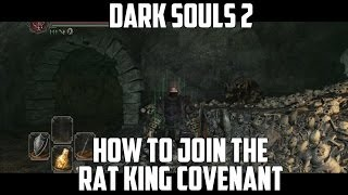 How To Join The Rat King Covenant - Both Ways - Dark Souls 2