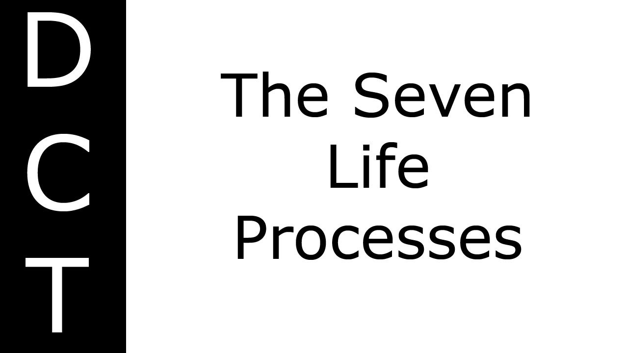 the seven processes of life Birth growth and development death respiration metabolism reproduction heredity and evolution.