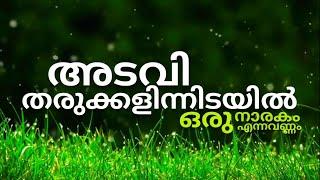 Adavi Tharukkalin Idayil   Malayalam Christian Song   Lyrical Video